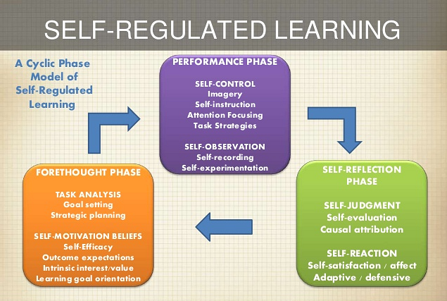 Performance Phase includes self-control through imagery, self-instructions, attention focusing,and task strategies. It also includes self-observation through self-recording and self-experimentation. The self-reflection pahse includes self-judgement through self-evaluation and causal attribution. It also includes Self-reaction through self-satisfaction/affect and adatpive/defensive. The Forethought Phase includes task analysis through goal setting and strategic planning. It also includes self-motivation beliefs through self-efficacy, outcome expectations, intrinsic interest/value, and learning goal orientation.