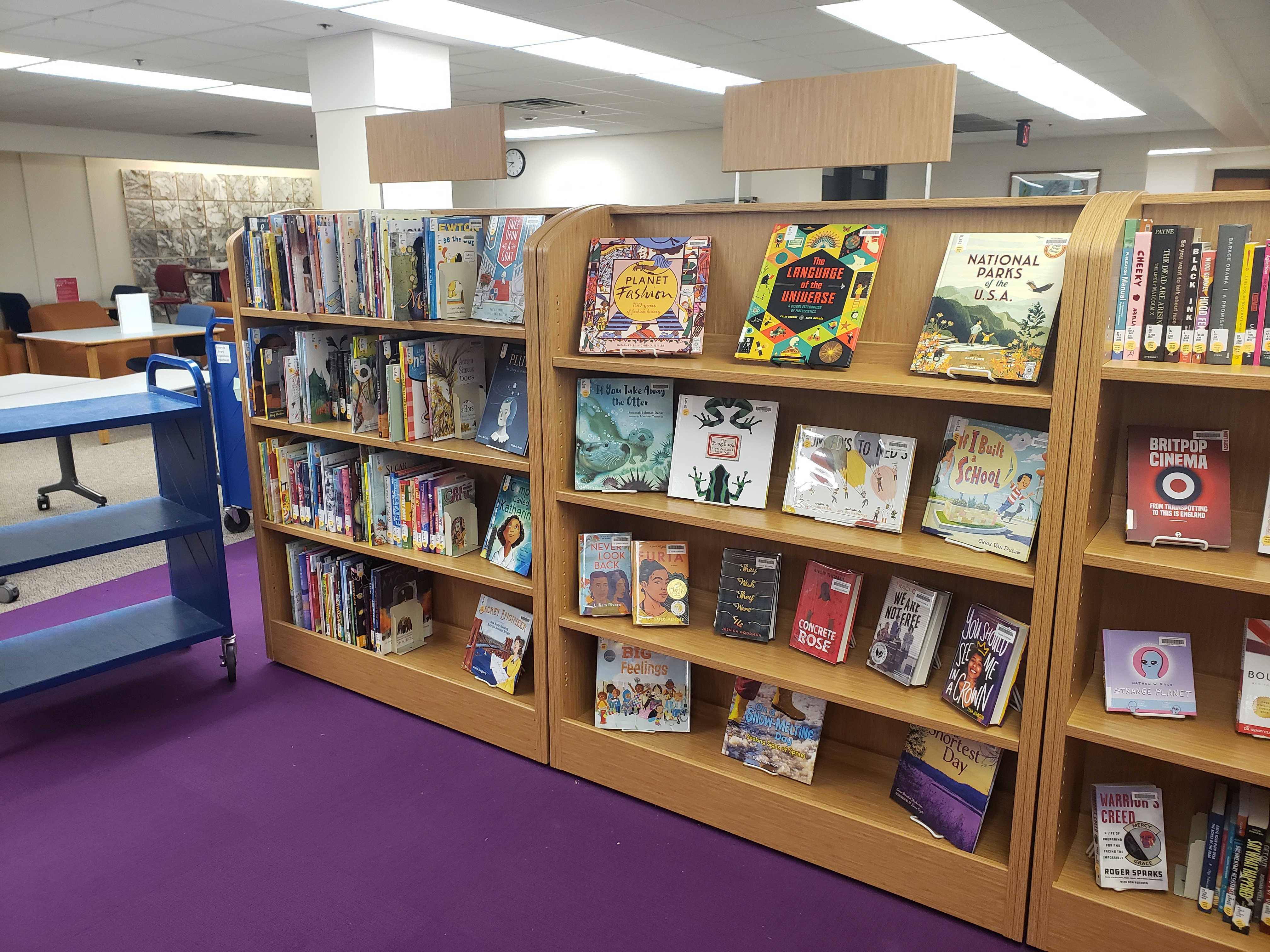 Picture of New Book Shelves Area