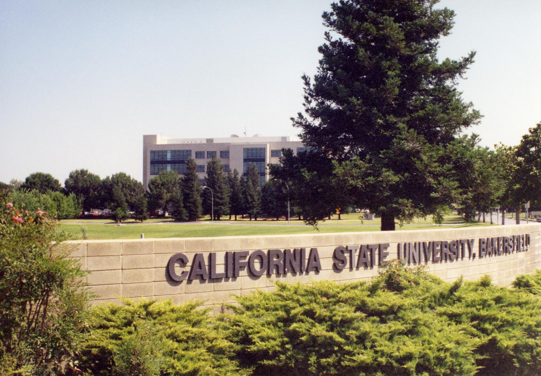 California State University sign