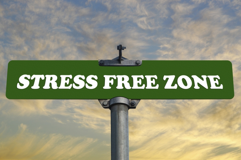 "Sign that reads ""Stress Free Zone"""