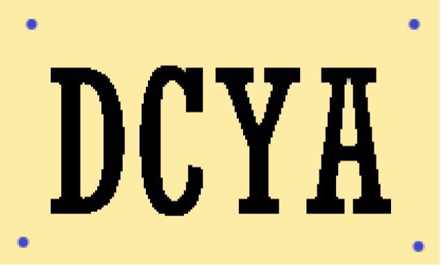 DCYA Survey Link