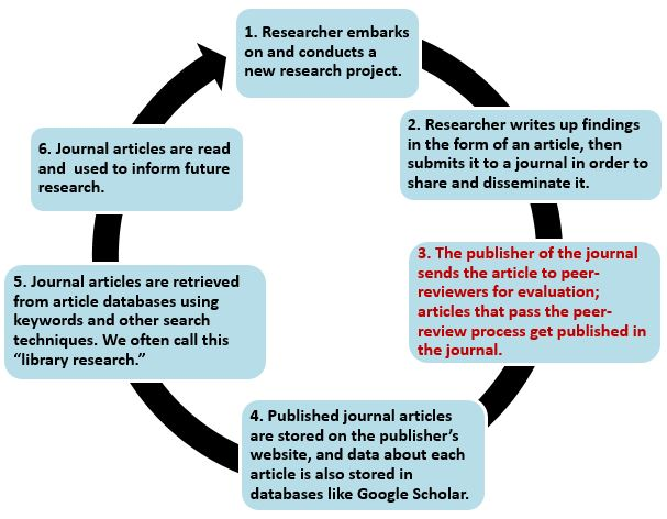 "1. Researcher embarks on and conducts a new research project. 2. Researcher writes up findings in the form of an article, then submits it to a journal in order to share and disseminate it. 3. The publisher of the journal sends the article to peer-reviewers for evaluation; articles that pass the peer-review process get published in the journal. 4. Published journal articles are stored on the publisher's website, and data about each article is also stored in databases like Google Scholar. 5) Journal articles are retrieved from article databases using keywords and other search techniques. We often call this ""library research."" 6) Journal articles are read and used to inform future research. 7) The process starts again from step 1!"
