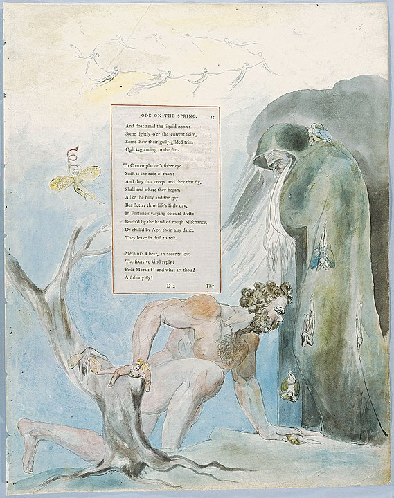 William Blake's Illustrations to Gray's Poems: