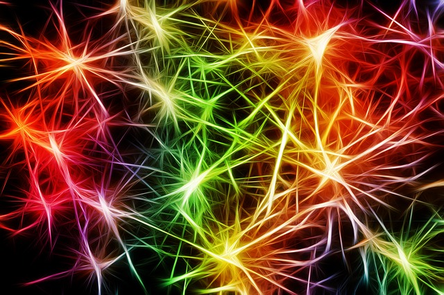 Neurons from Pixabay.com