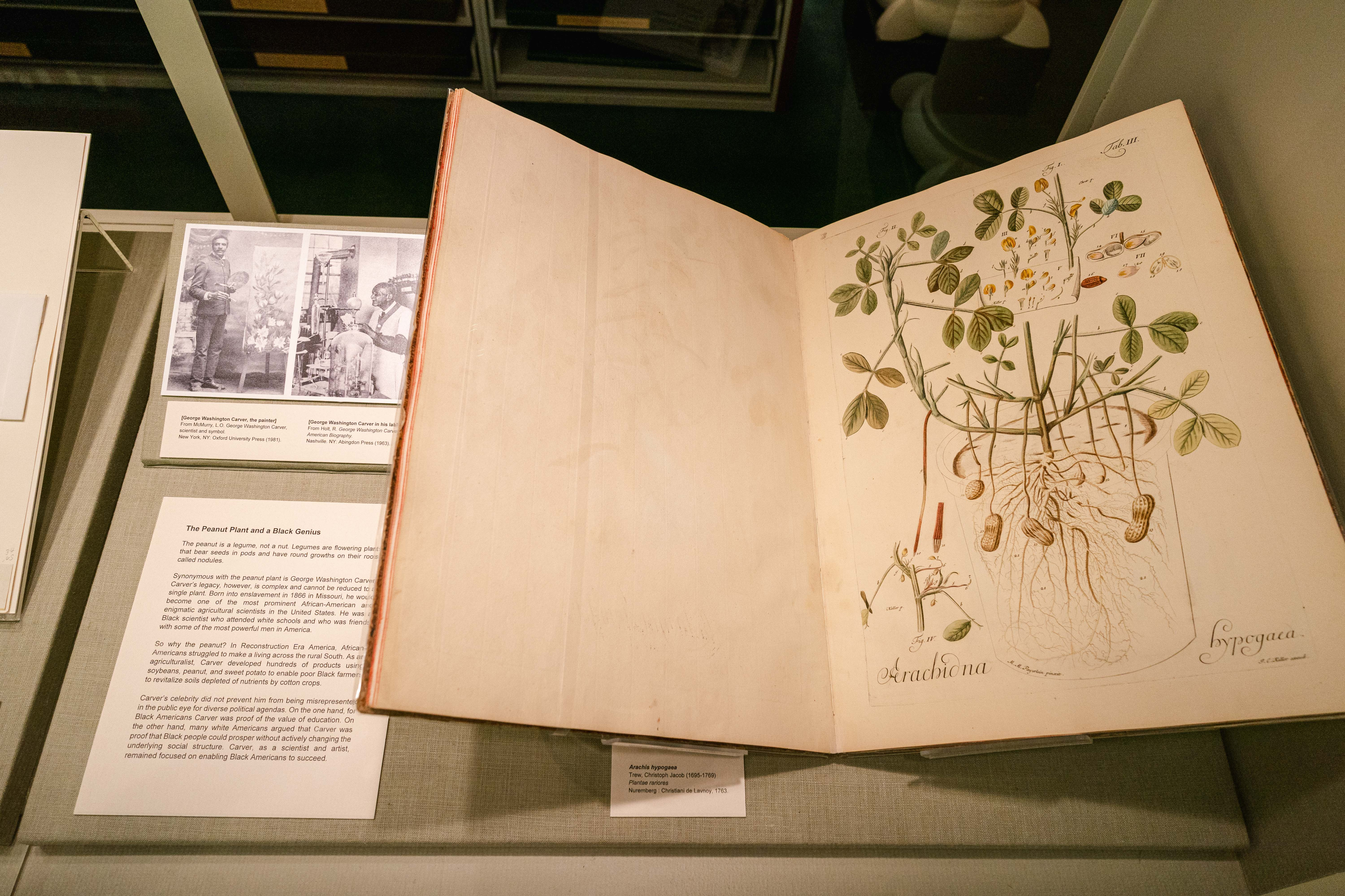 Rare Book Room: The Peanut Plant and a Black Genius