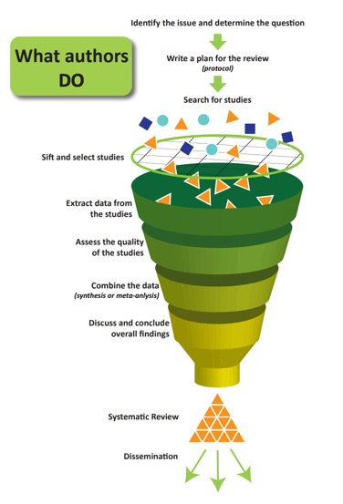 Systematic review process - what do authors do?