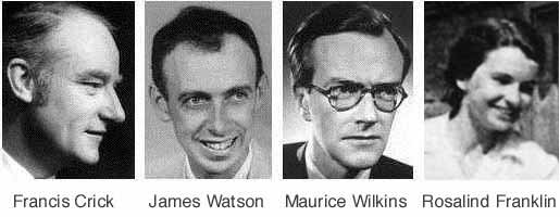 photo of Crick, Watson, Wilkins and Franklin