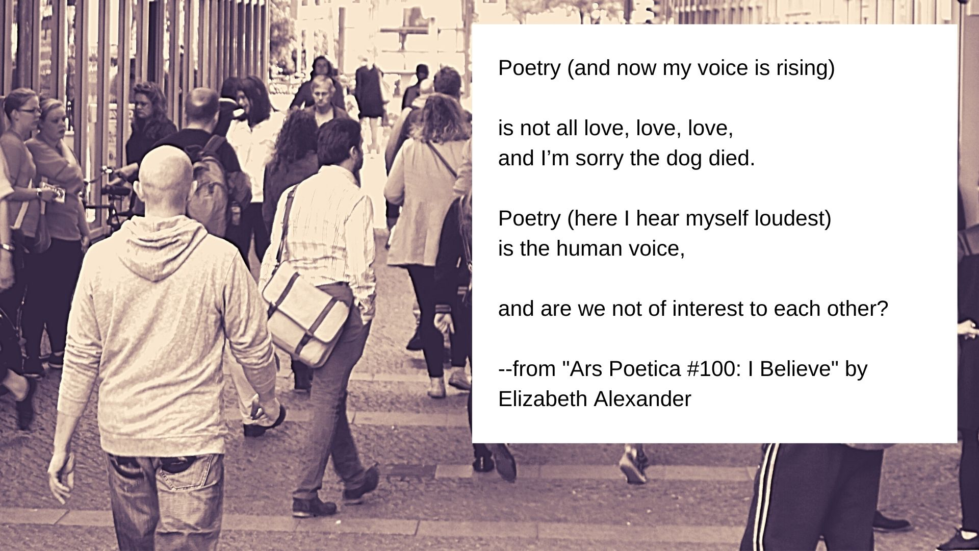 Poetry (and now my voice is rising)  is not all love, love, love, and I'm sorry the dog died.  Poetry (here I hear myself loudest) is the human voice,  and are we not of interest to each other?  --from