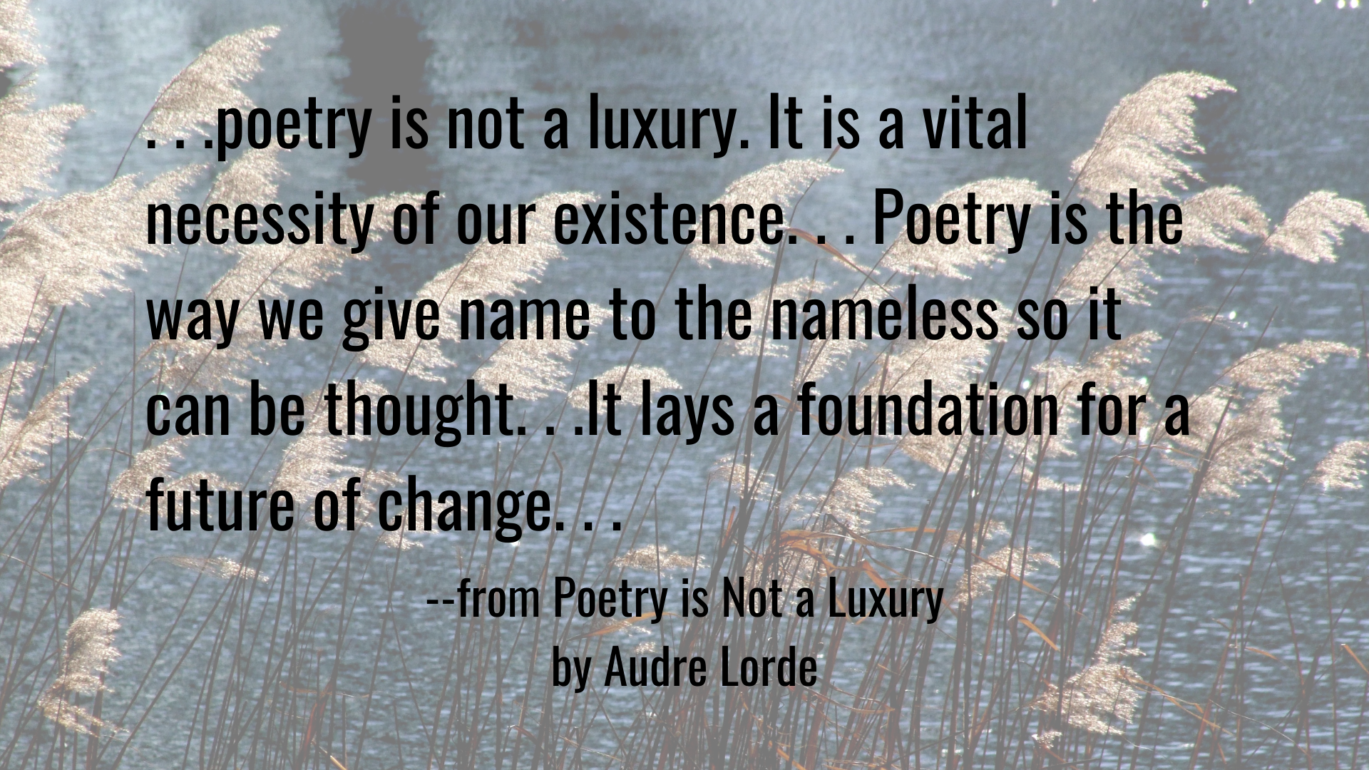poetry is not a luxury. It is a vital necessity of our existence. . . Poetry is the way we give name to the nameless so it can be thought. . .It lays a foundation for a future of change. . .Quote from Audre Lorde