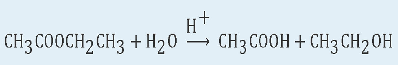 The hydrolyzation of Ethyl ethanoate produces the corresponding and Acetic acid and Ethanol.