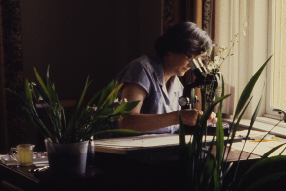 Photo of Margaret Stones working in the LSU Faculty Club, c. 1980.