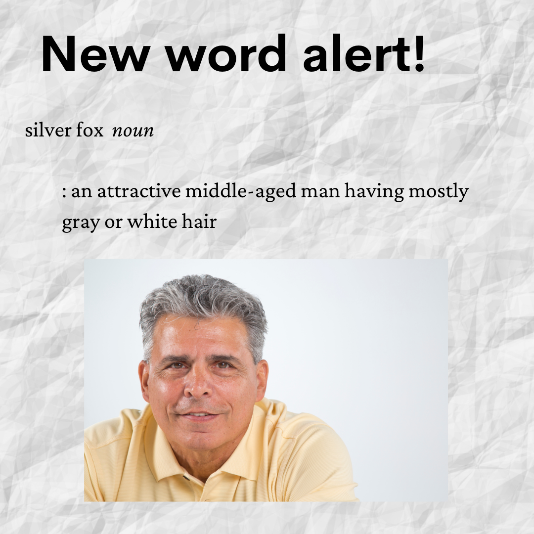 """Definition of """"silver fox"""" in Merriam-Webster dictionary"""