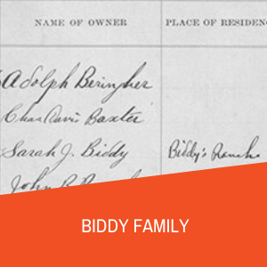 Biddy Family Research Guide