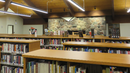 Photo of Nicolet College Library taken from back of room