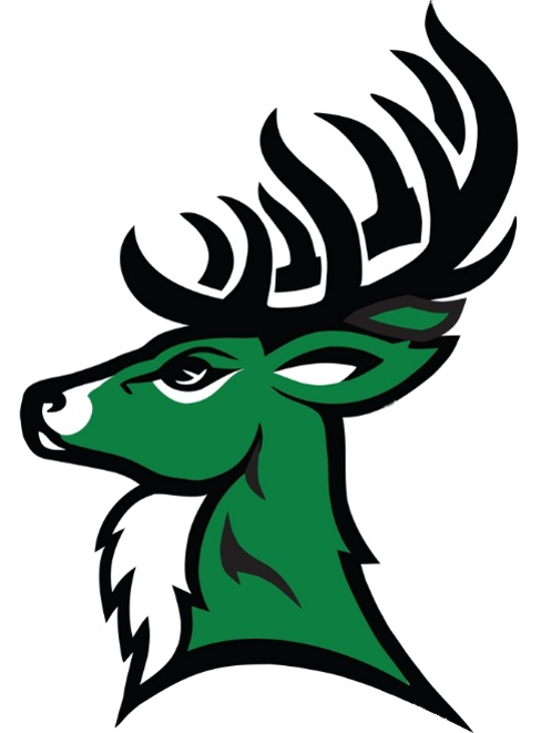 Tahanto Regional Middle/High school mascot, a stag head, with large black antlers. The stag head, from the neck up, facing left, is schaded in green and white.