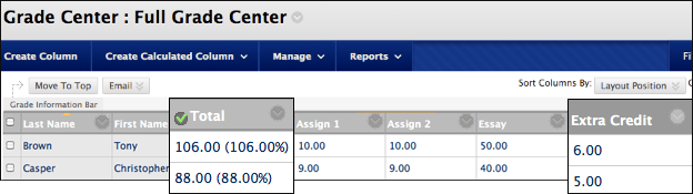 Screenshot of total column with extra credit built in