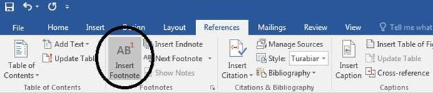 Image Footnotes in Microsoft Word