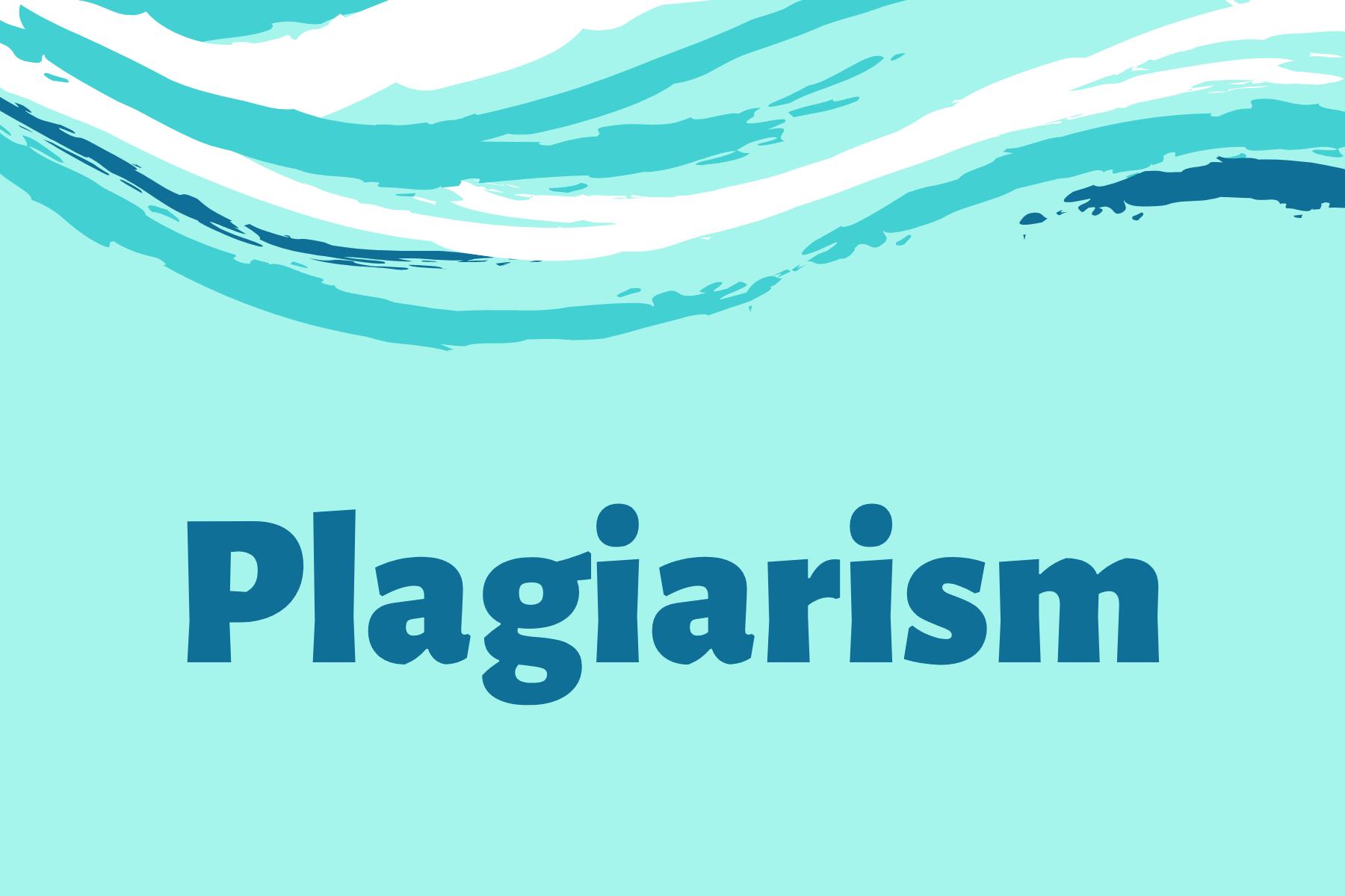 Plagiarism Information