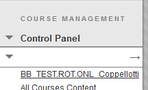 Screenshot of Step 1: Control Panel > Course
