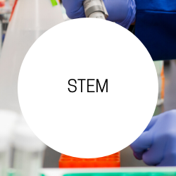 Go to STEM.