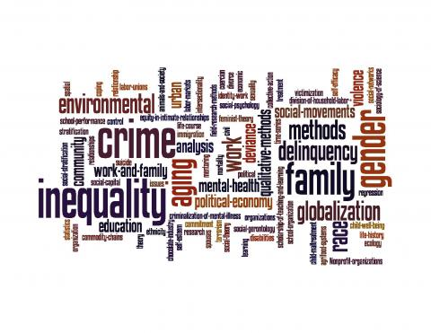 sociology word cloud