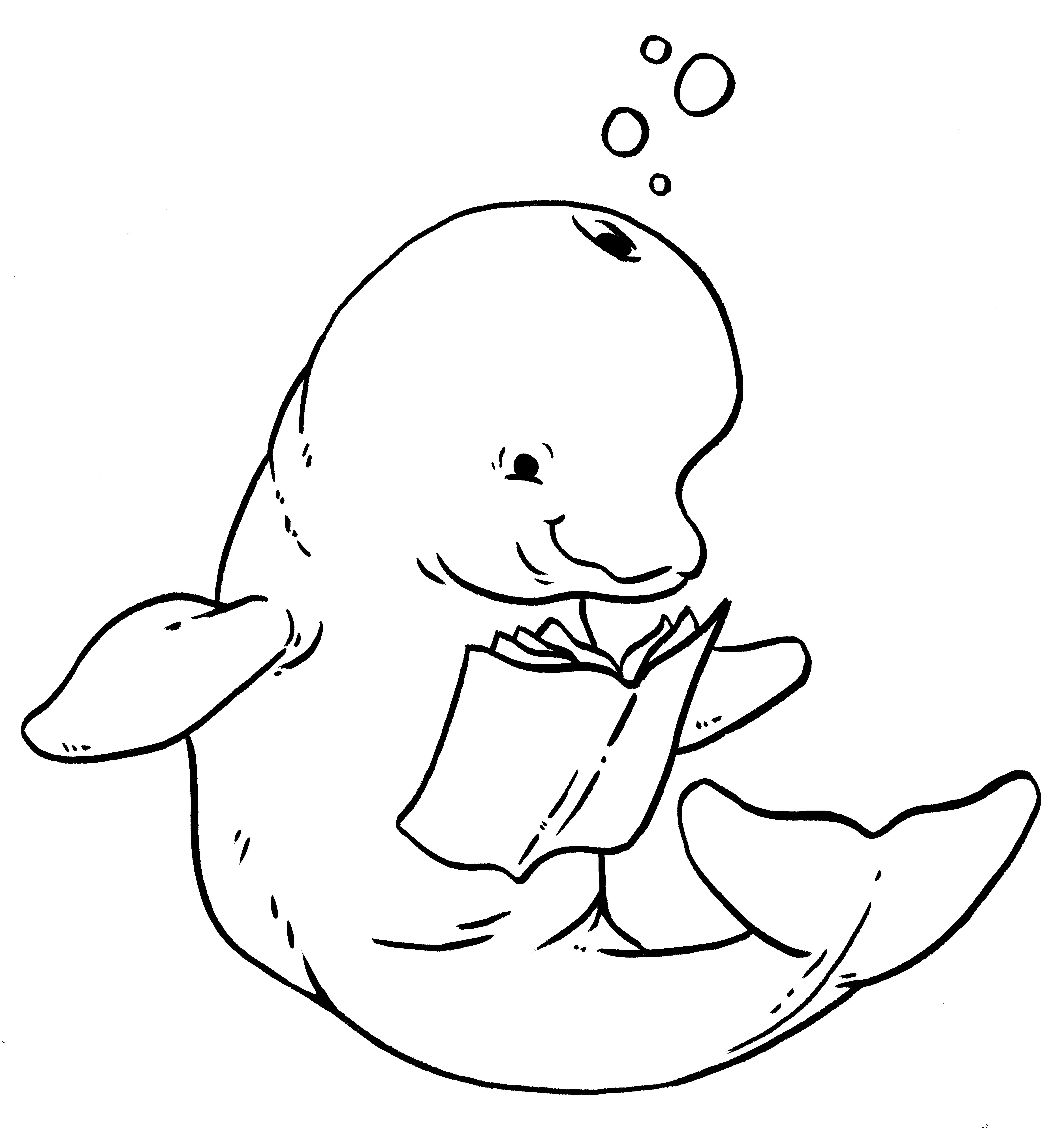 beluga coloring sheet