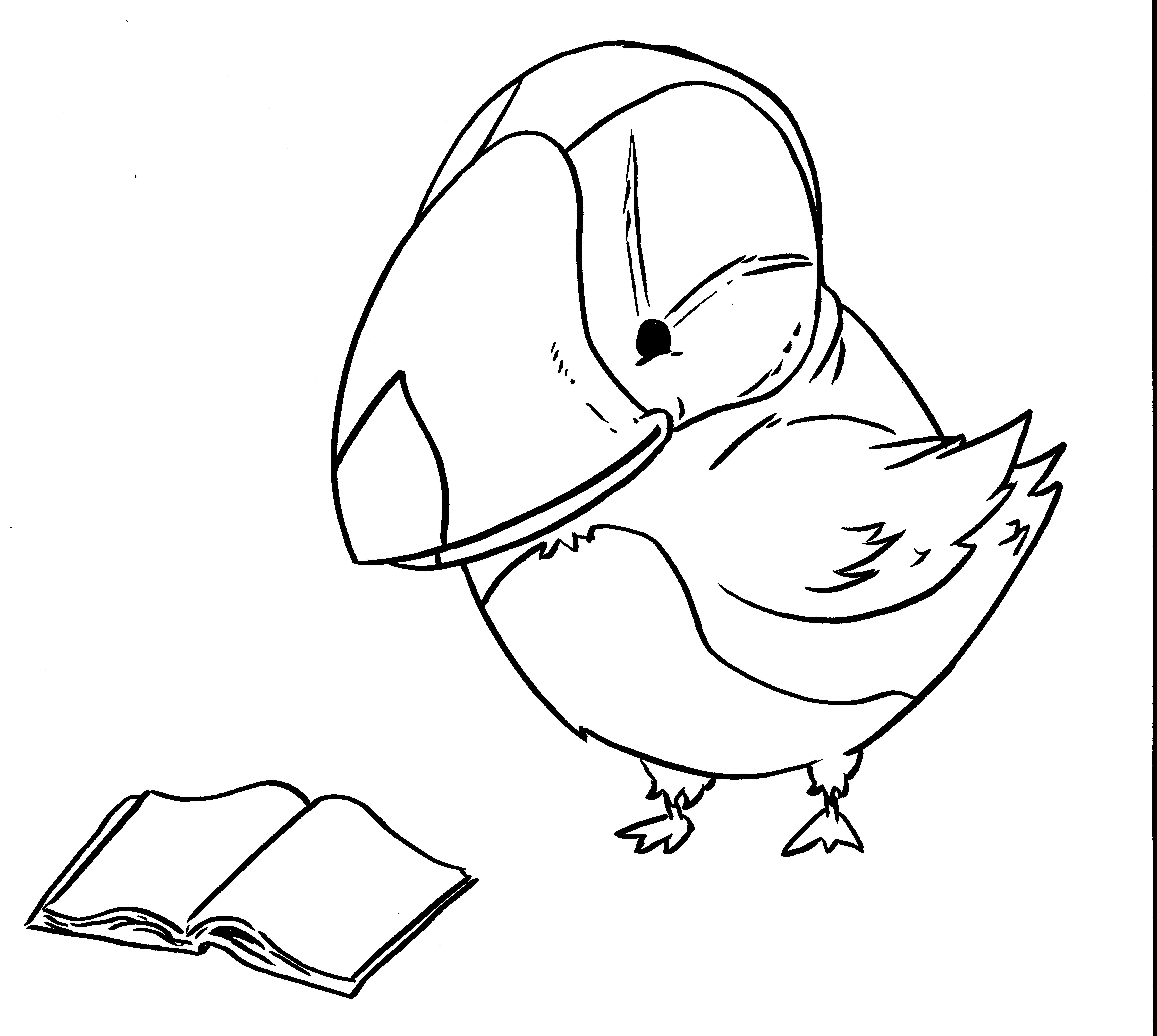 puffin coloring sheet