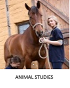 Resources for animal studies