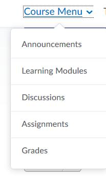 Screenshot of the Course Menu dropdown menu in Brightspace