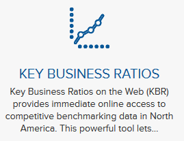 Screenshot of Key Business Ratios on Mergent Intellect
