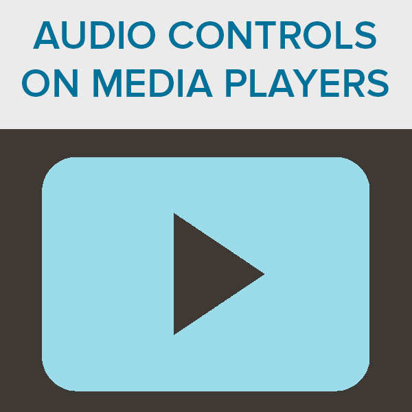 Audio Controls On Media Players
