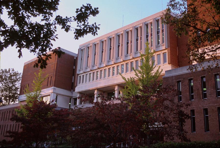 Outside, Fourth Floor, Alden Library