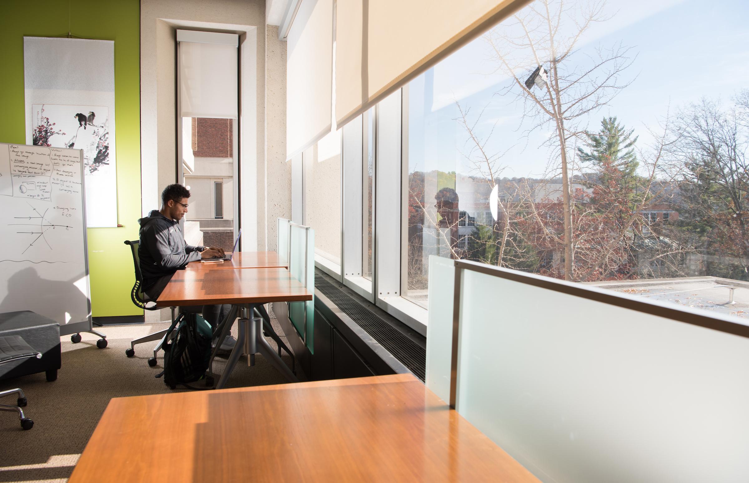 Fourth Floor Windows, Alden Library