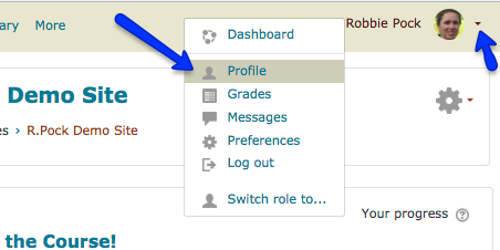 screenshot of moodle page preferences menu
