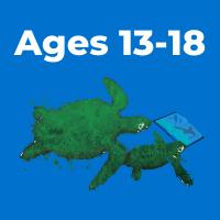 ages 13-18 button