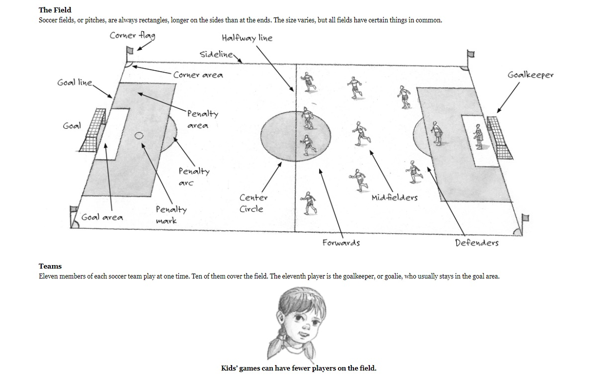 Magic Treehouse Fact Tracker Soccer sample page 2