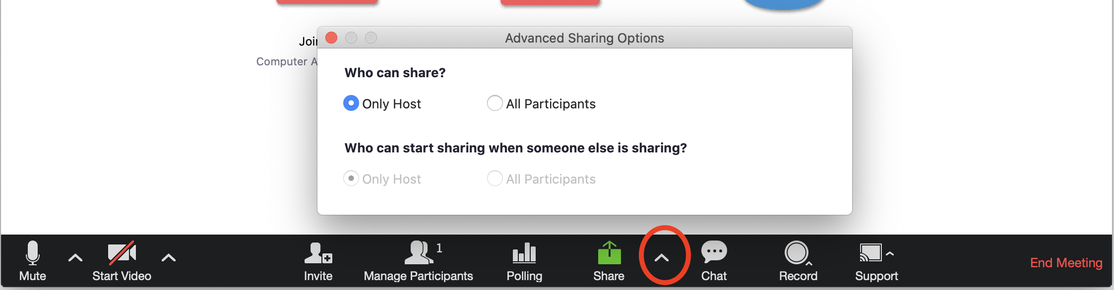 screenshot of Advanced Sharing options in Zoom