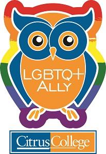 LGBTQ+ Ally Rainbow Colored Owl