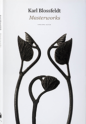 Karl Blossfeldt : Masterworks - edited by Ann and Jürgen Wilde, 2017