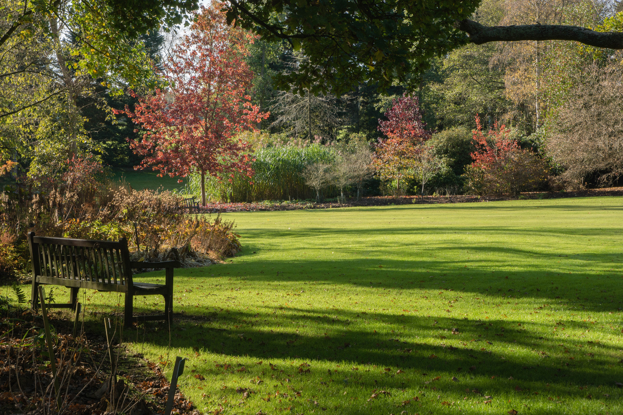 Fall is an ideal time to rejuvenate a lawn; photo courtesy of Flickr cc/Derek Winterburn