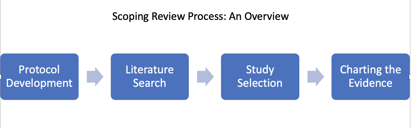 scopingreview_overview