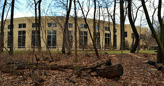 Rear facade of the library behind bare trees and leaves on the ground