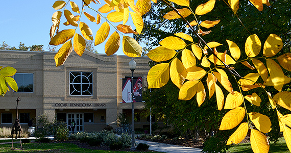Yellow leaves in front of the library