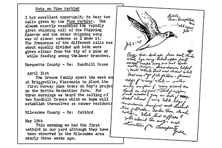 A typed page of notes and a handwritten page with a bird drawing