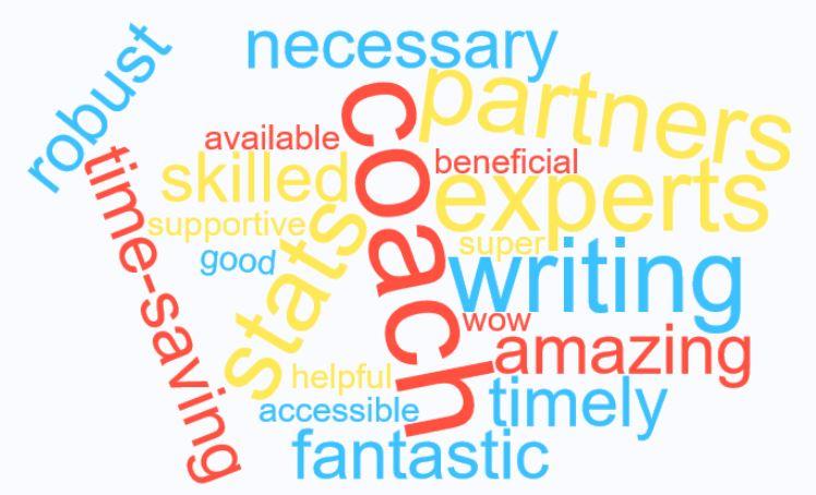 Faculty Word Cloud