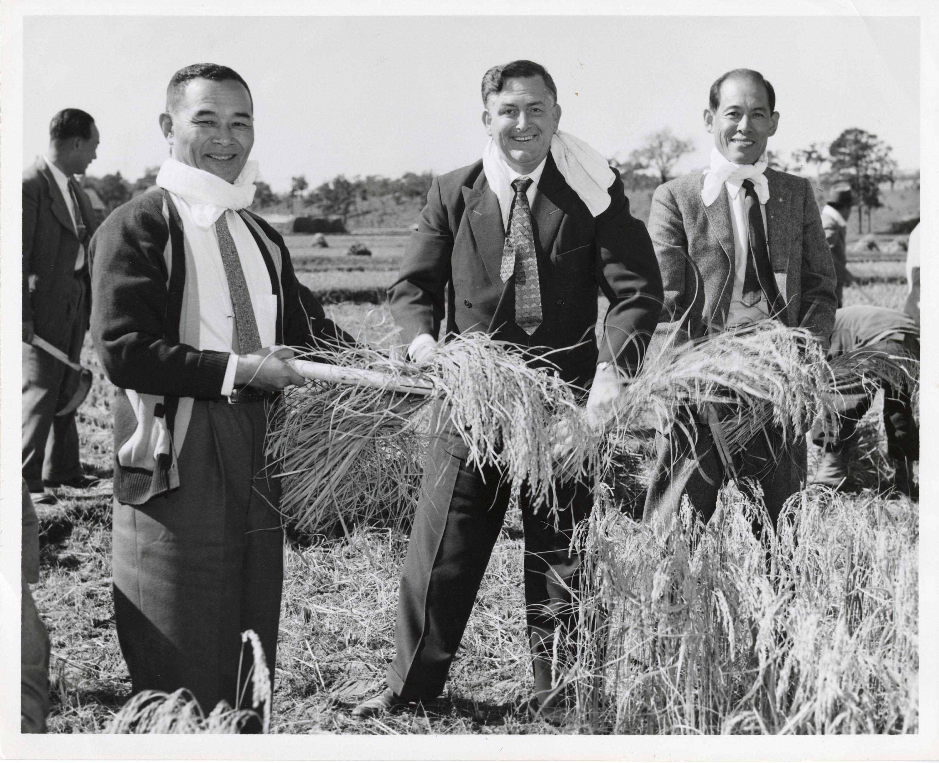Three men with hay