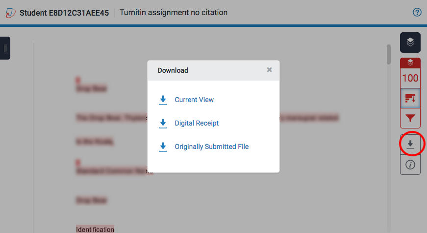 turnitin download option
