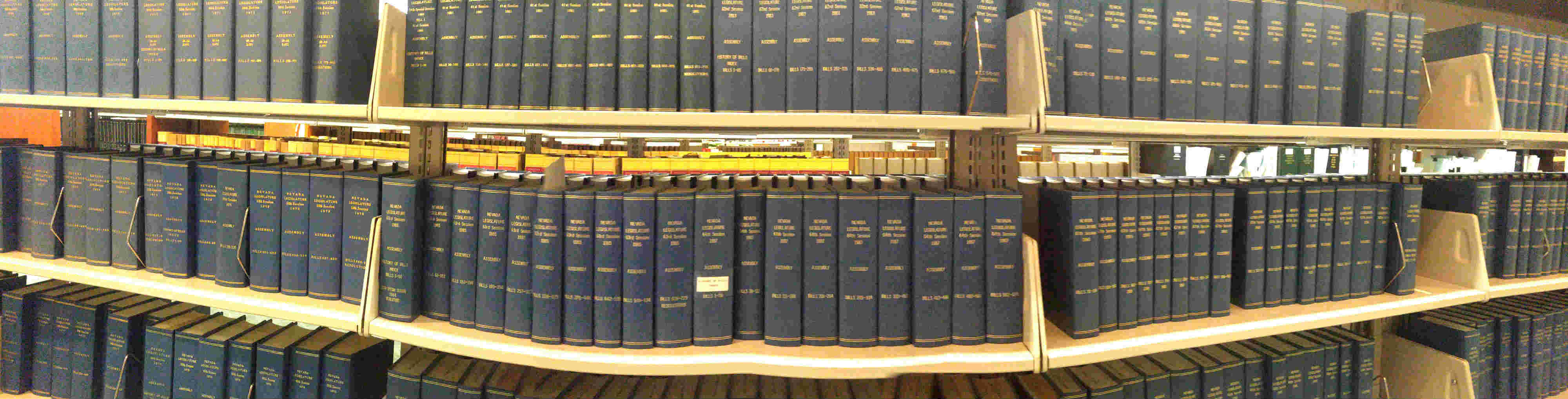 Shelves of reference books