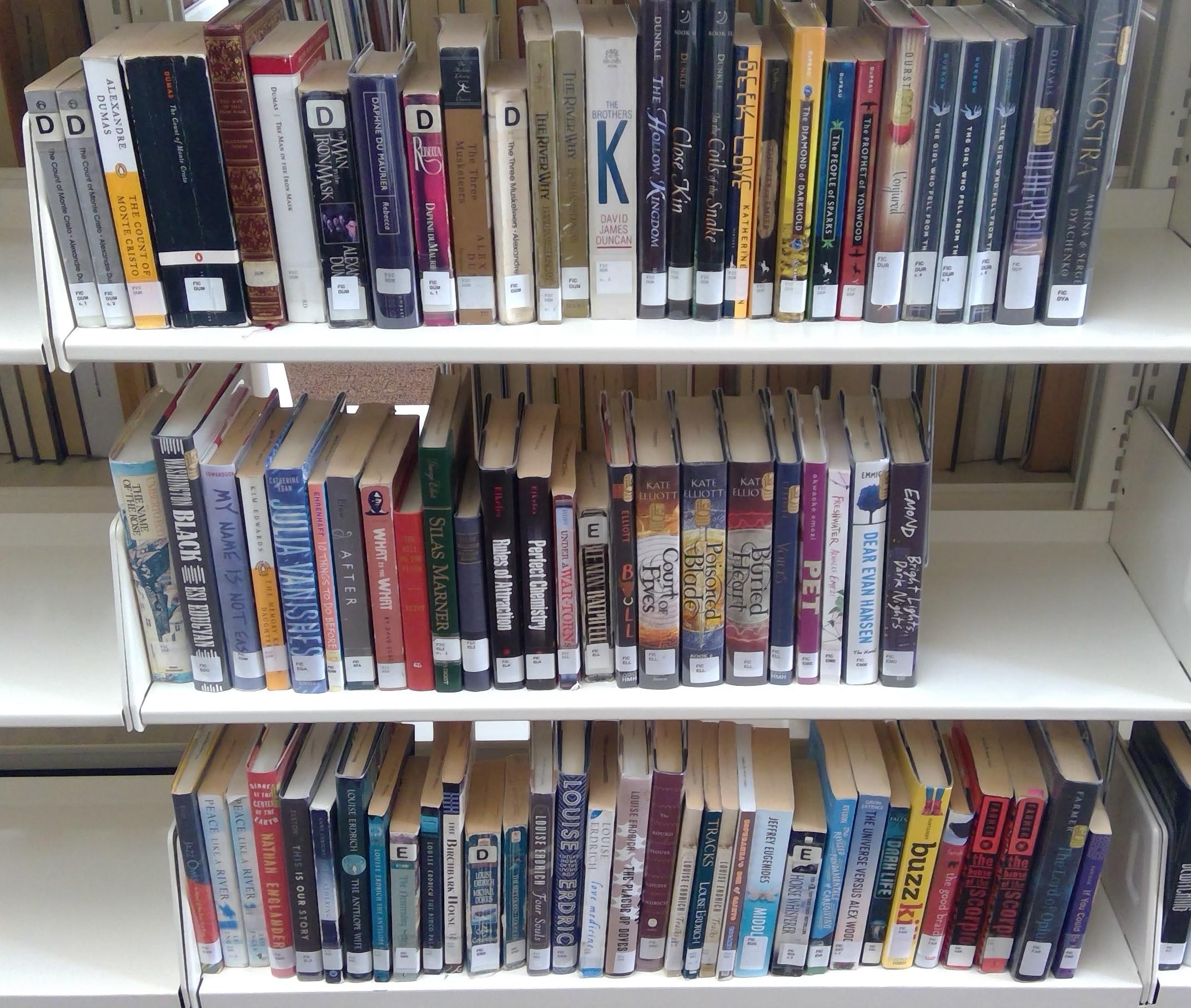 FIC Shelf 11