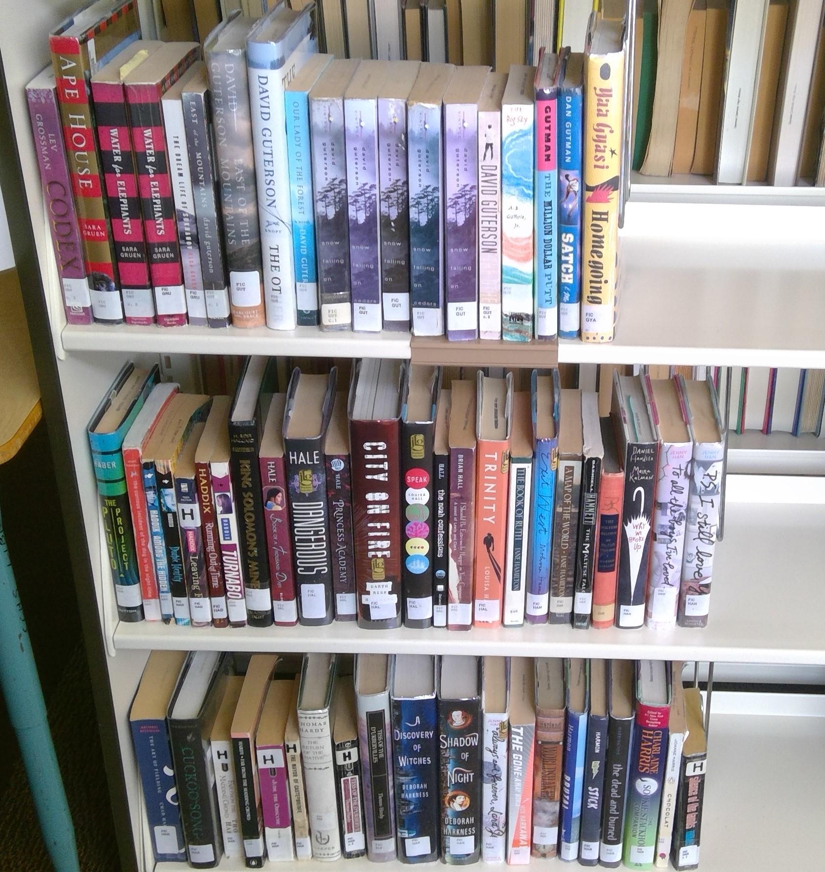 FIC Shelf 15